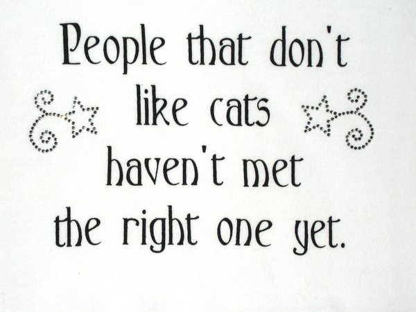 People that don't like cats (Ladies) - SMALL only