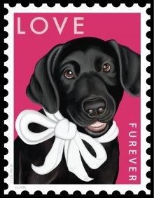 Love Furever (Black Lab)