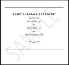 Sample Asset Purchase Agreement (APA) for Route Sale