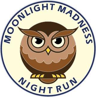 Moonlight Madness Owl