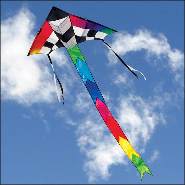 Champion Delta Kite by Into the Wind