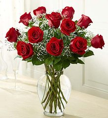 Premium Long Stem Red Roses- bir21
