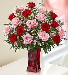 Shades of Pink and Red™ Premium Long Stem Roses- lov08