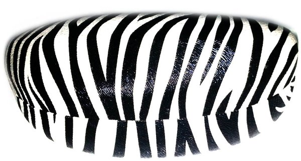 Zebra Hard Case
