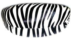 Zebra Hard Case