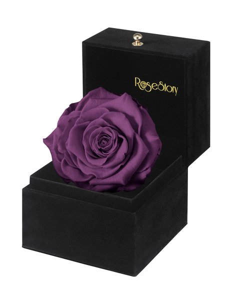 rosestory crush on you exquisite single purple rose gift box rosestory a rose is. Black Bedroom Furniture Sets. Home Design Ideas
