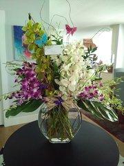 [FFAO501] Orchids