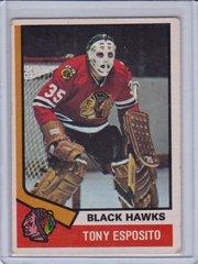 Tony Esposito 1974-75 O-Pee-Chee Hockey card #170