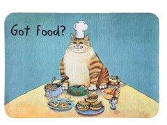Got Food? Kitty Feeding Mat