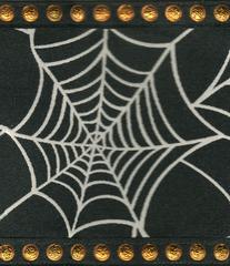 Celebrate It Ribbon 2.5 Inch Spiderweb Wired Edge Ribbon