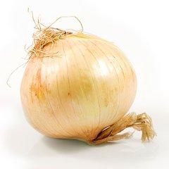 Onion Plants, Yellow Granex