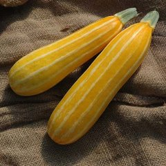 Sunbeam Squash 6 pack