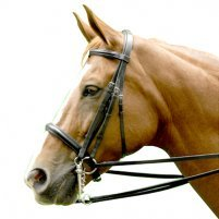 Exselle Elite Double Bridle (Intrepid)
