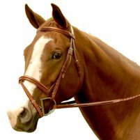Exselle Elite Fancy Raised Padded Bridle (Intrepid)