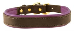 HAVANA BROWN Padded Leather Dog Collar in NINE Padded Colors