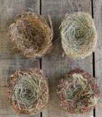 Bundled Nests