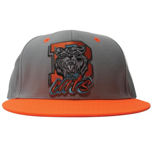 Air Jordan 10 Bobcats snapback (Grey, orange)