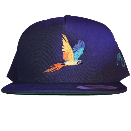 Tropical Parrot-dice snap back (Navy)