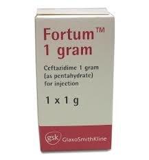 FORTUM INJ. 1GR X1