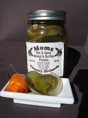 Bread and Butter Pickles Spicy