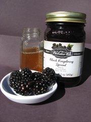 Sugar Free Black Raspberry Fruit Spread