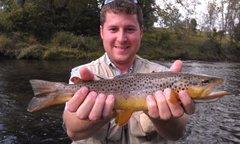 TN Tailwaters/South Holston Trip Oct 10-12, 2017 SOLD OUT