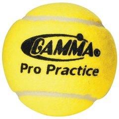 Gamma Pro Practice Balls
