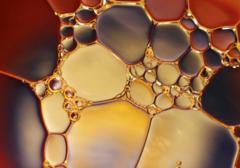 Full Range of Essential Oils