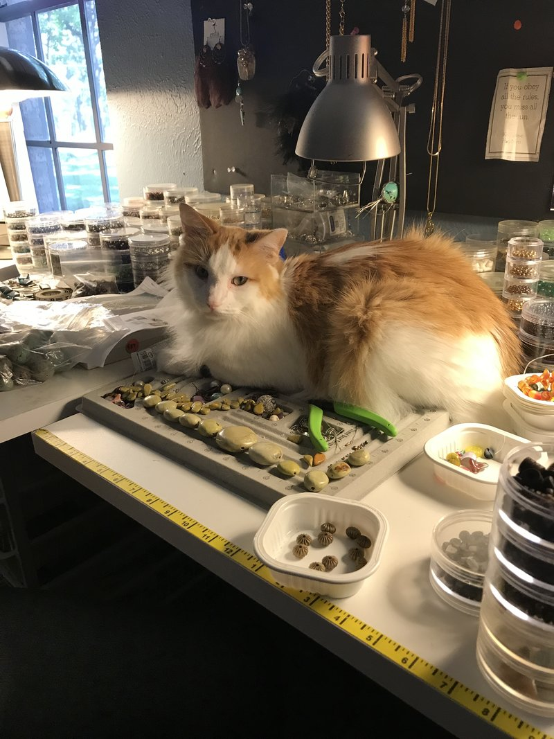 A cat sitting on handcrafted jewelry for sale