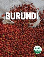 Burundi Arabica