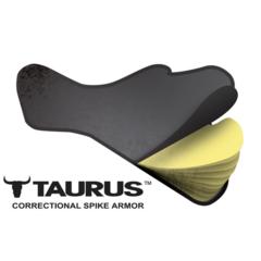 ARMOR EXPRESS - K-9 BALLISTICS TAURUS SPIKE 3