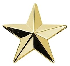 "1/2"" 5 Year Service Star Gold"