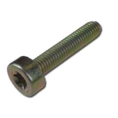 SPLINE SCREW T27-M5 X 25
