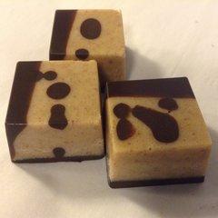 Salty Pecan Caramel Squares - Dairy FREE - 4 pieces per box - Organic - Raw