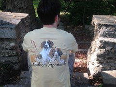 Springer Spaniel Vegas Gold Short Sleeve T - Southern Sportsman's Apparel