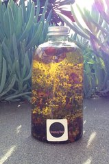 Rosemary Rose Ultimate Treatment Oil 8oz