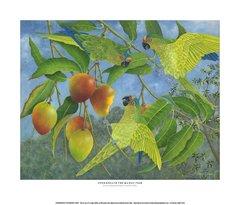 """Underneath The Mango Tree"""